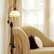 BOXIMIYA波西米亚 欧式 铁艺落地灯 客厅卧室 5009-1F