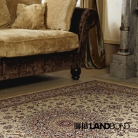 联邦宝达 仿古客厅地毯 欧式古典风华丽复古地毯 达芬奇005